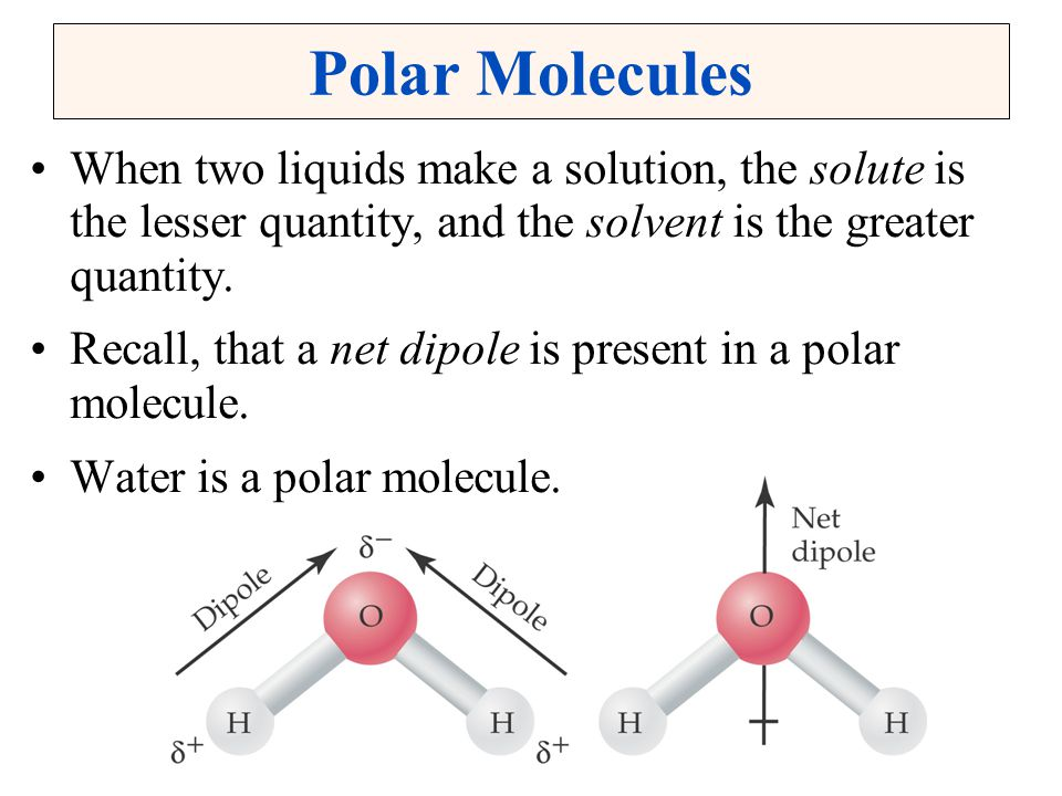 Polar Molecules When two liquids make a solution, the solute is the lesser quantity, and the solvent is the greater quantity.