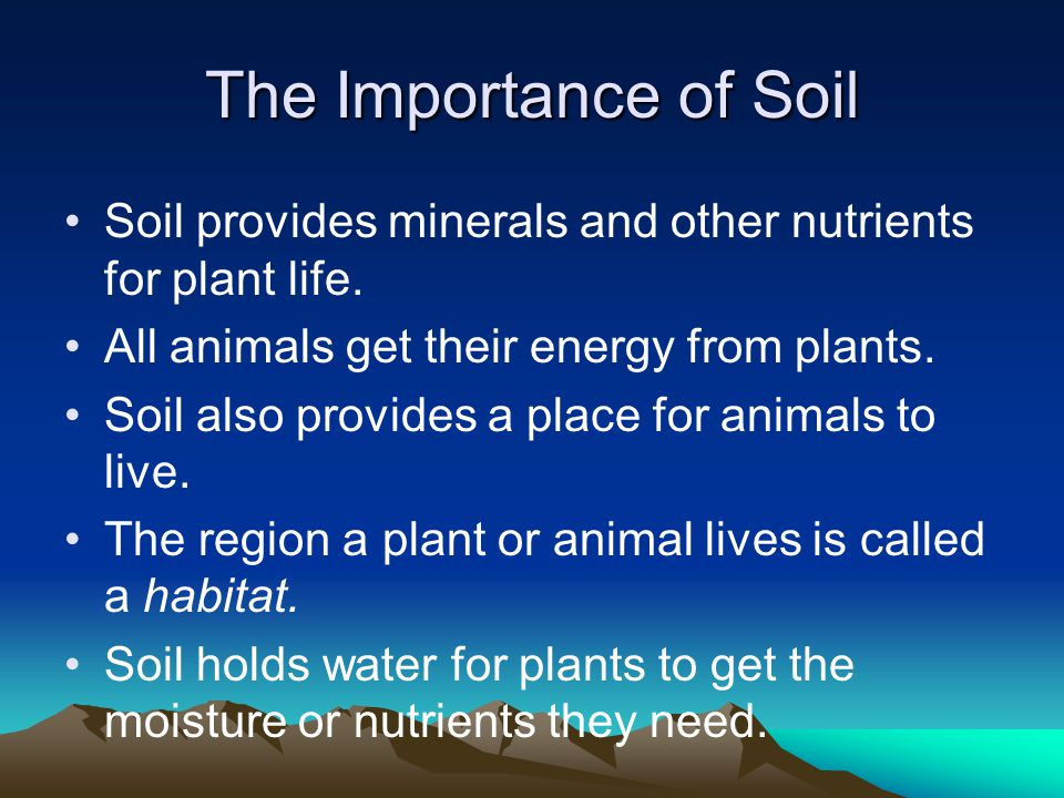 The Importance of Soil Soil provides minerals and other nutrients for plant life. All animals get their energy from plants.