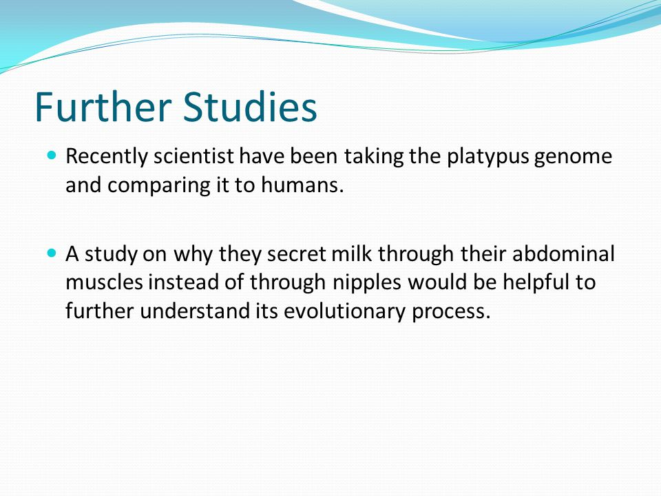 Further Studies Recently scientist have been taking the platypus genome and comparing it to humans.