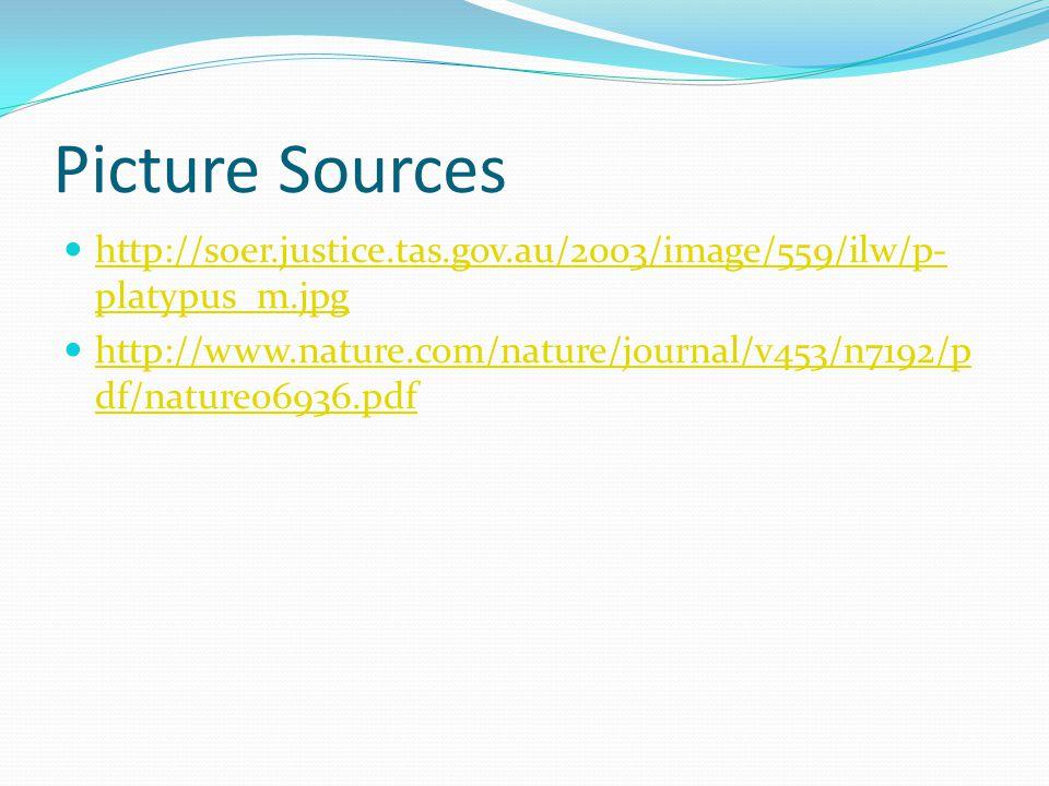 Picture Sources http://soer.justice.tas.gov.au/2003/image/559/ilw/p-platypus_m.jpg.