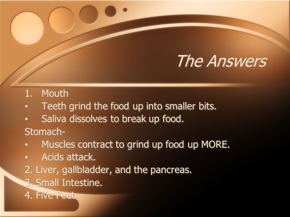 The Answers Mouth Teeth grind the food up into smaller bits.