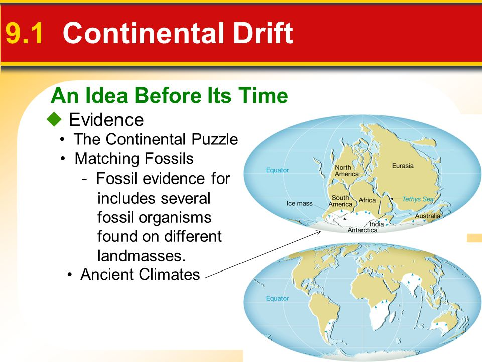 9.1 Continental Drift An Idea Before Its Time  Evidence