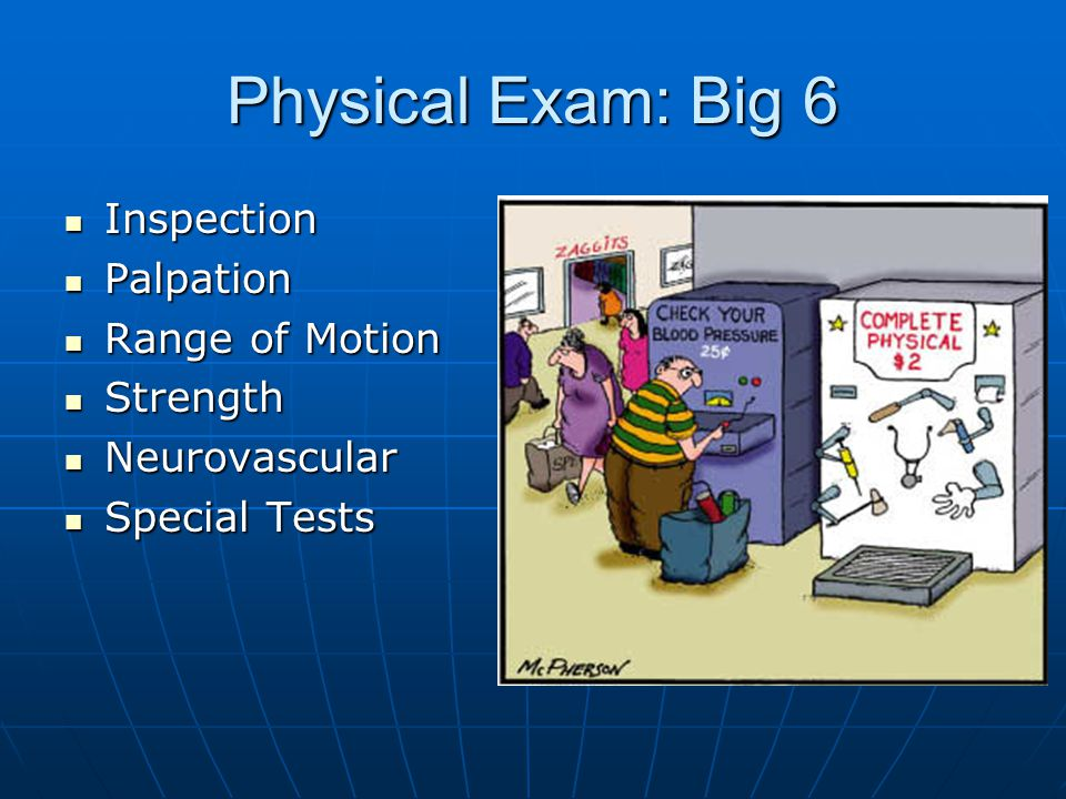 Physical Exam: Big 6 Inspection Palpation Range of Motion Strength