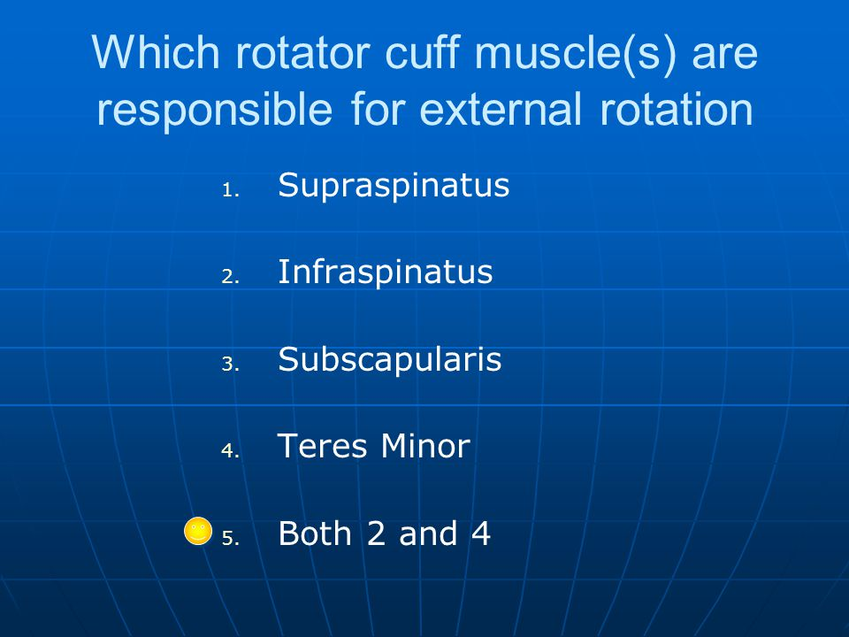 Which rotator cuff muscle(s) are responsible for external rotation