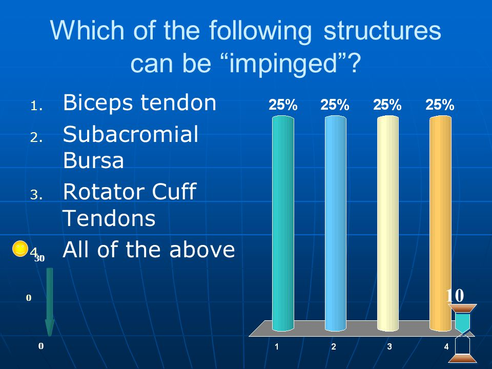 Which of the following structures can be impinged