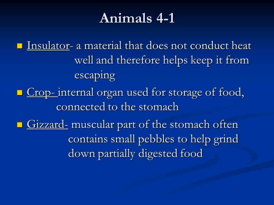 Animals 4-1 Insulator- a material that does not conduct heat well and therefore helps keep it from escaping.