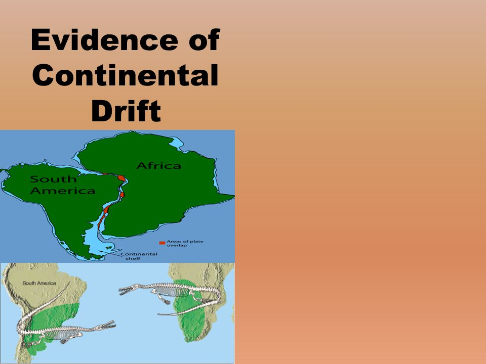 Evidence of Continental Drift