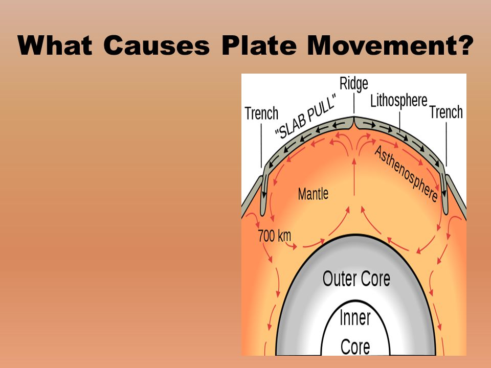 What Causes Plate Movement