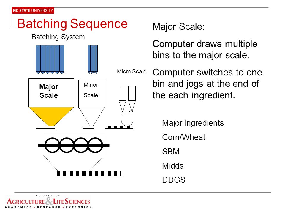 Batching Sequence Major Scale:
