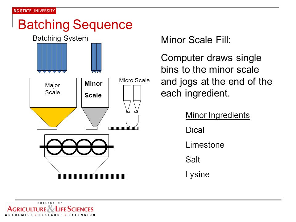 Batching Sequence Minor Scale Fill:
