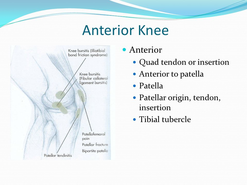 Anterior Knee Anterior Quad tendon or insertion Anterior to patella