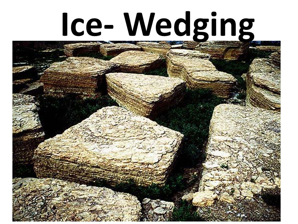Ice- Wedging http://www.city-data.com/forum/houston/1144104-root-barrier-totally-diy-project-report.html.