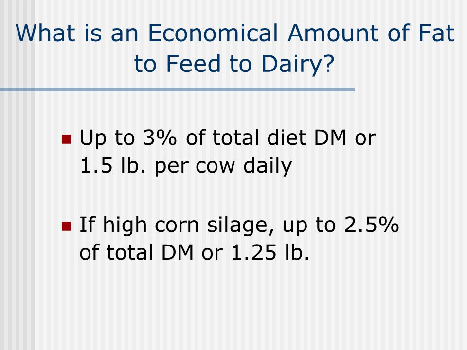 What is an Economical Amount of Fat to Feed to Dairy