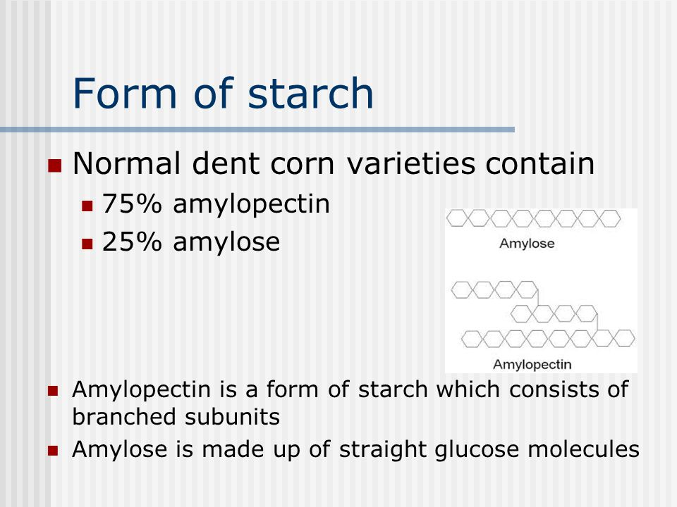 Form of starch Normal dent corn varieties contain 75% amylopectin