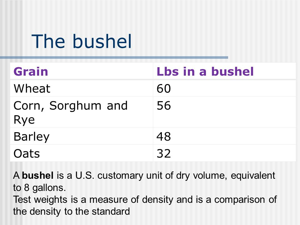 The bushel Grain Lbs in a bushel Wheat 60 Corn, Sorghum and Rye 56