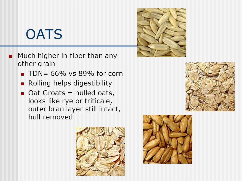 OATS Much higher in fiber than any other grain