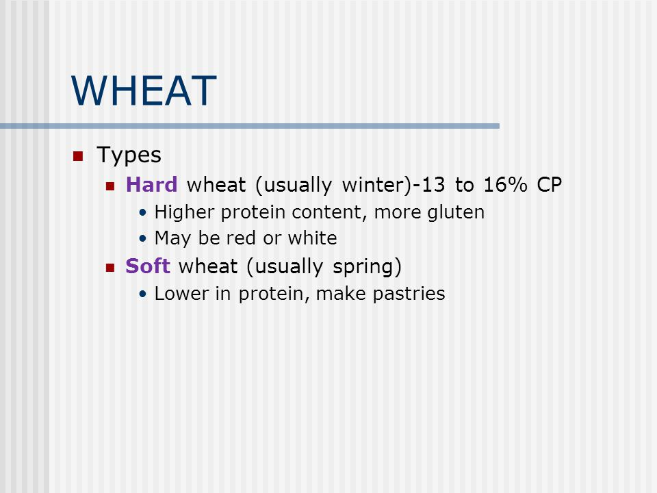 WHEAT Types Hard wheat (usually winter)-13 to 16% CP
