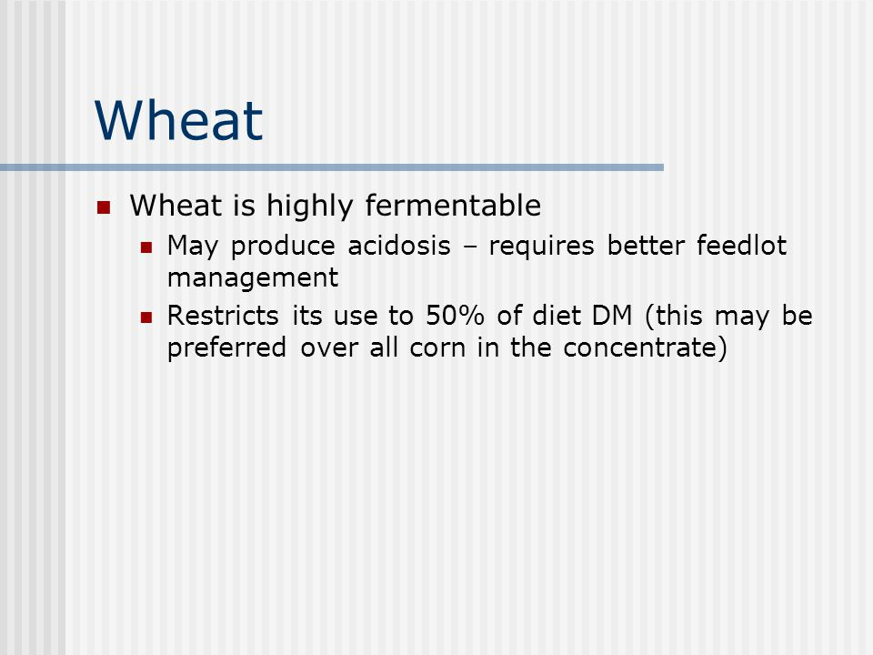 Wheat Wheat is highly fermentable