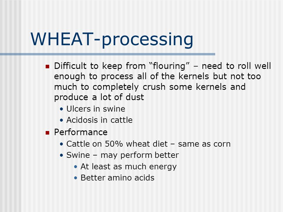 WHEAT-processing