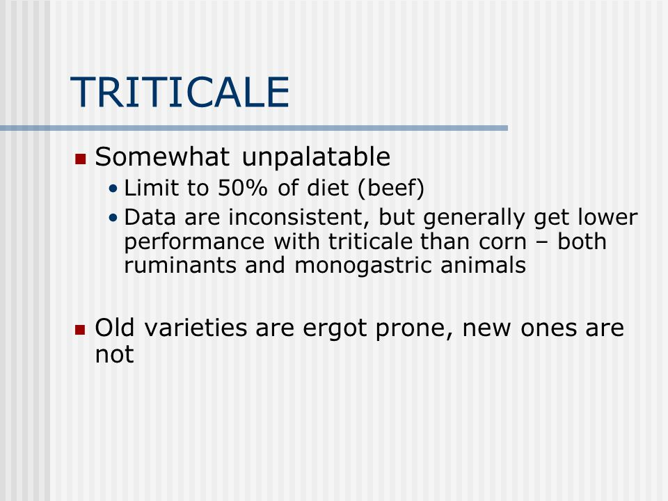 TRITICALE Somewhat unpalatable