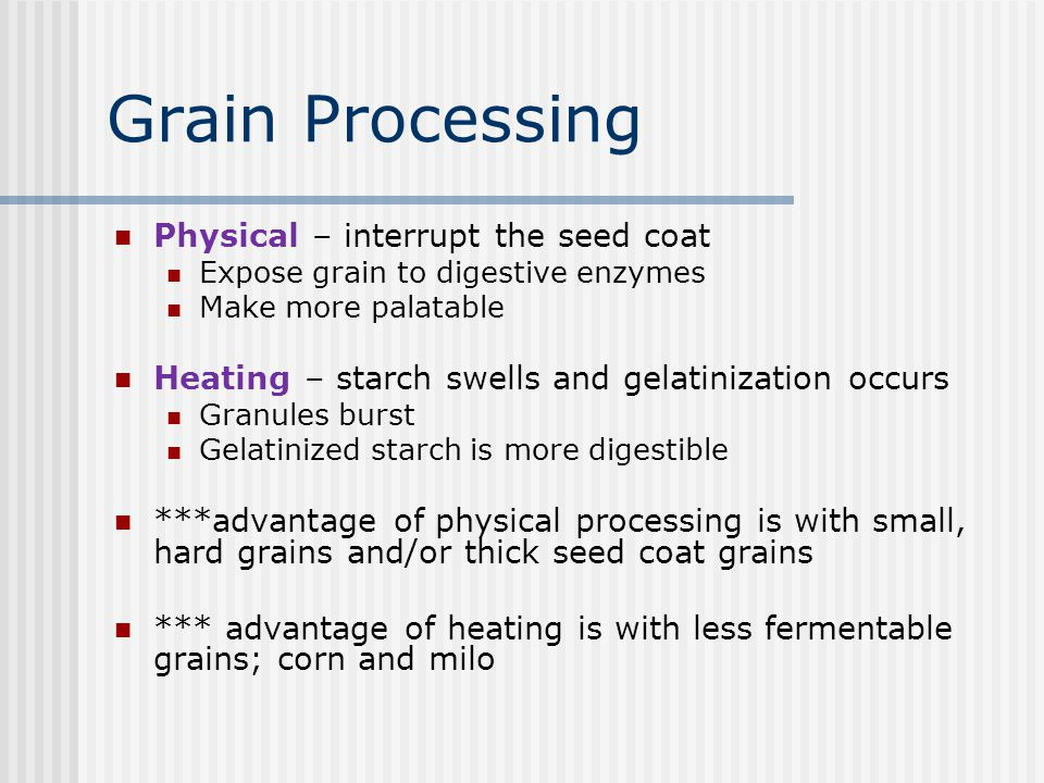 Grain Processing Physical – interrupt the seed coat