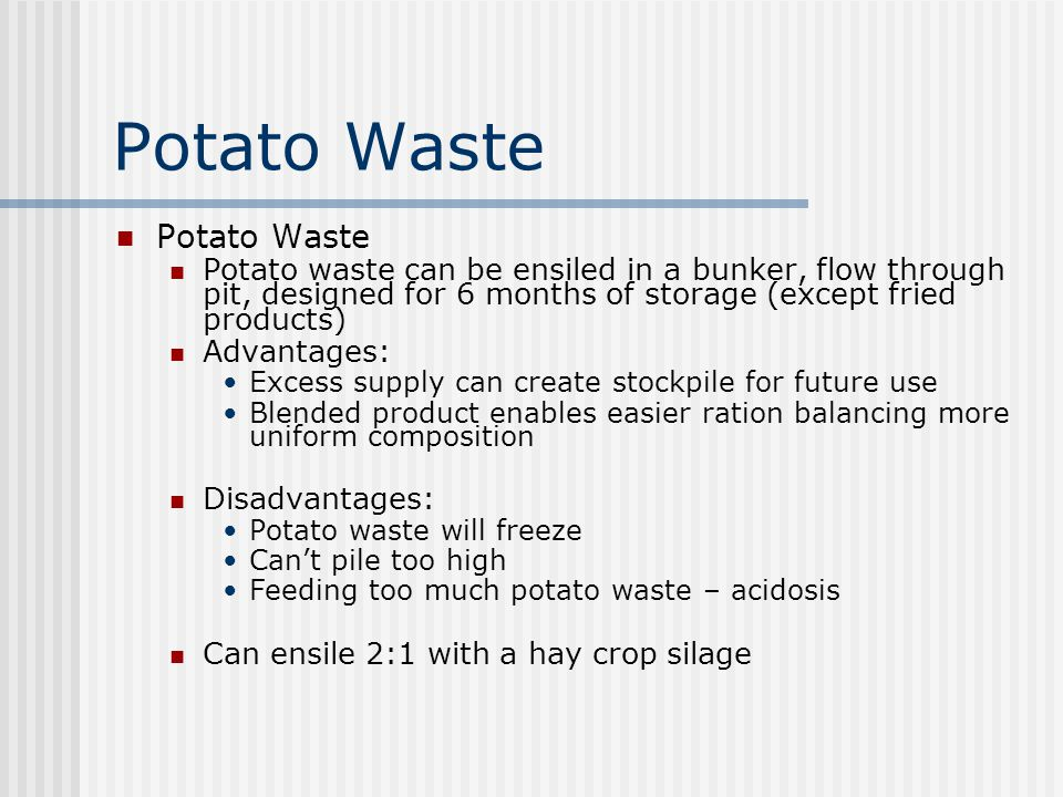 Potato Waste Potato Waste