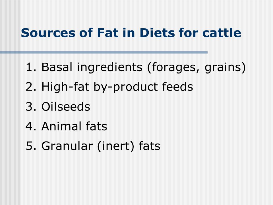 Sources of Fat in Diets for cattle
