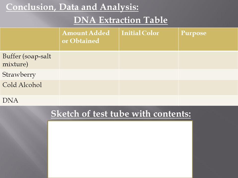 Sketch of test tube with contents: