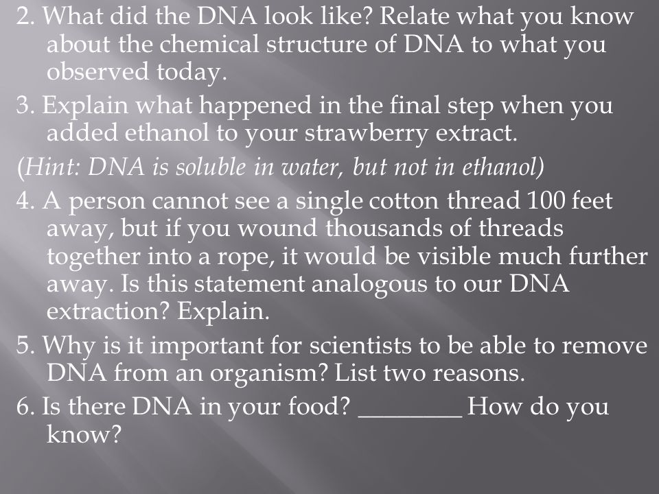 2. What did the DNA look like