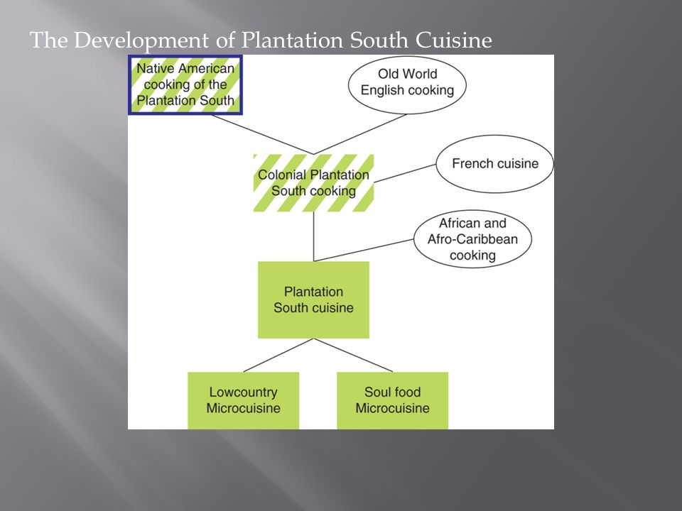 The Development of Plantation South Cuisine