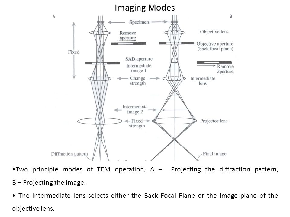 Imaging Modes •Two principle modes of TEM operation, A – Projecting the diffraction pattern, B – Projecting the image.
