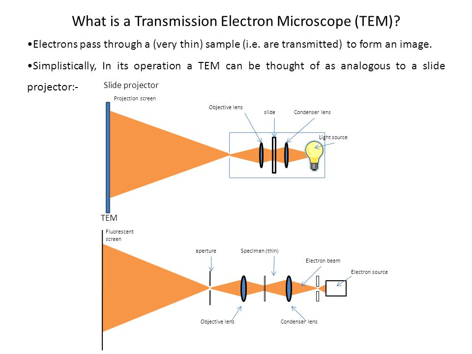 What is a Transmission Electron Microscope (TEM)