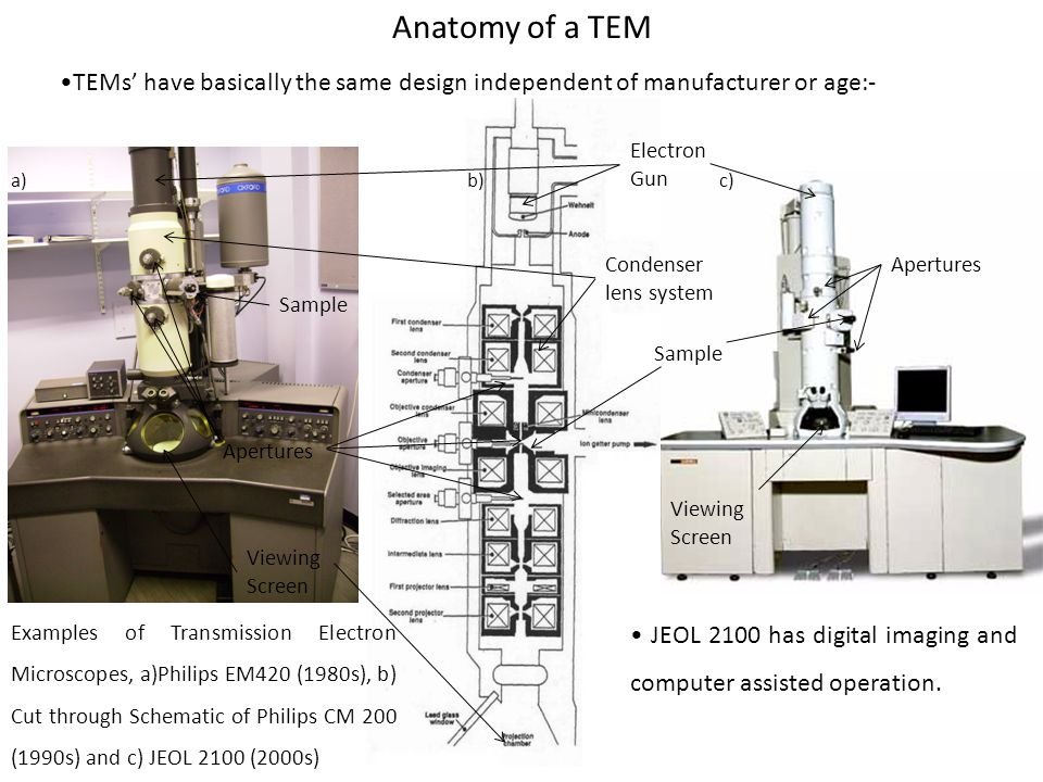 Anatomy of a TEM •TEMs' have basically the same design independent of manufacturer or age:- Apertures.