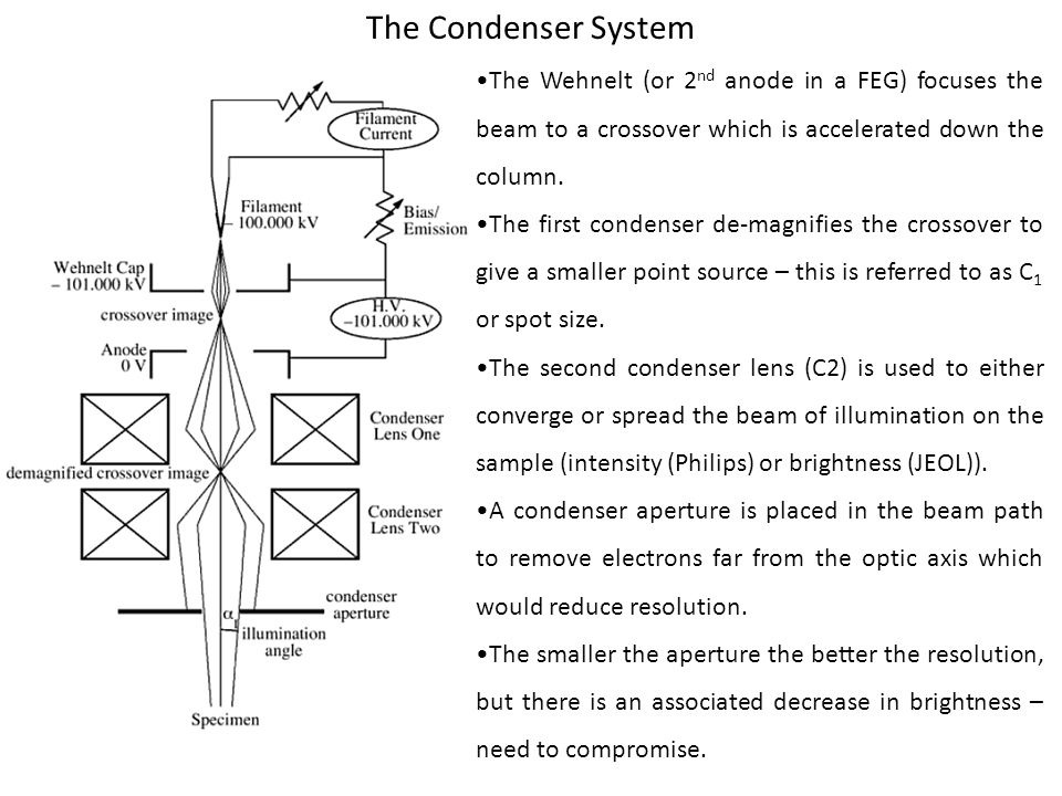 The Condenser System •The Wehnelt (or 2nd anode in a FEG) focuses the beam to a crossover which is accelerated down the column.