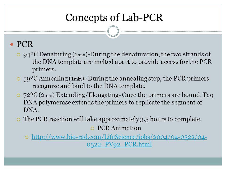 Concepts of Lab-PCR PCR