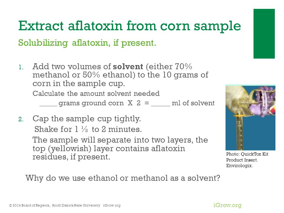 Extract aflatoxin from corn sample