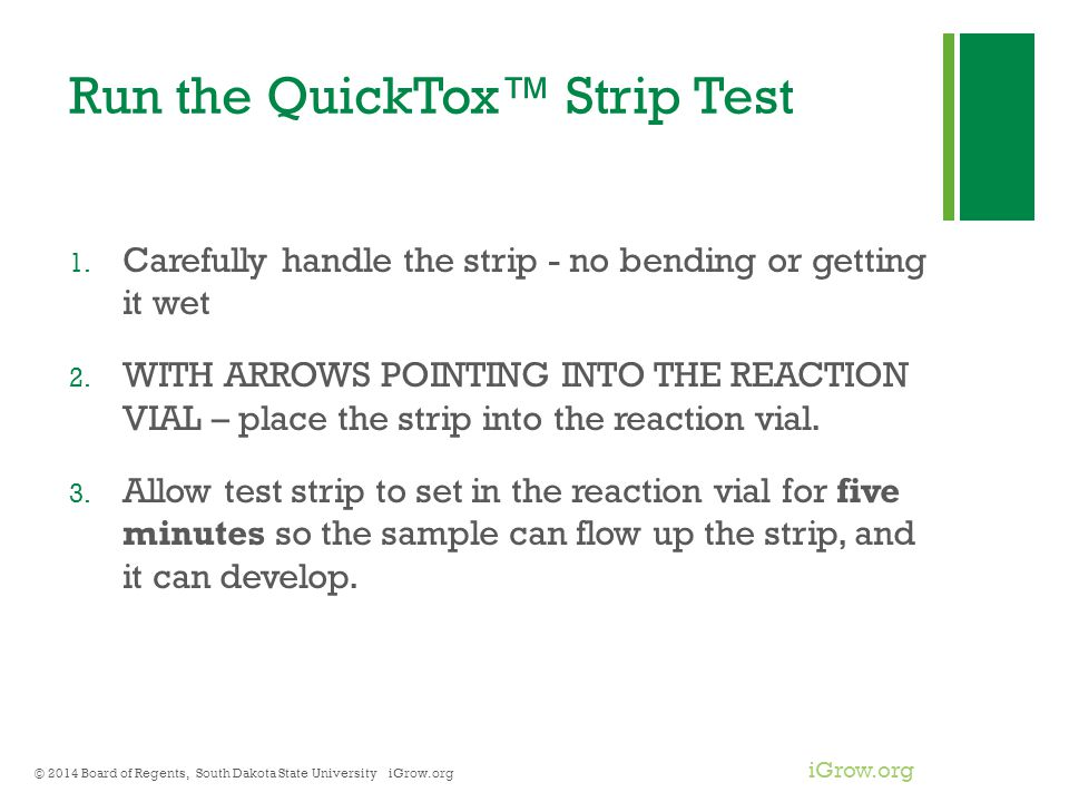 Run the QuickTox™ Strip Test