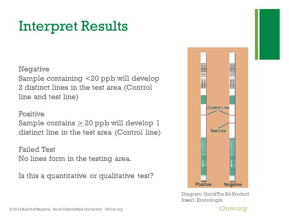 Interpret Results