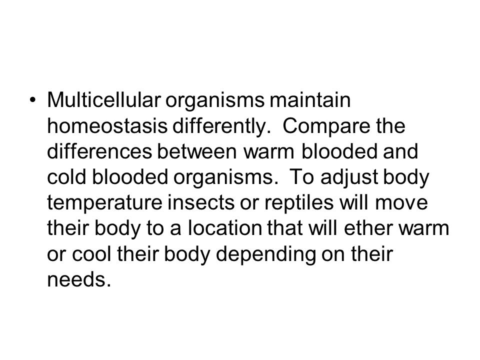 Multicellular organisms maintain homeostasis differently