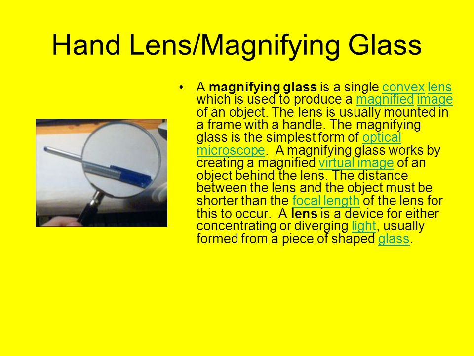 Hand Lens/Magnifying Glass