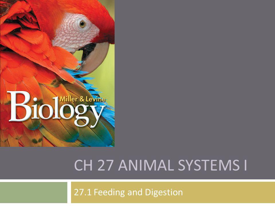 Ch 27 Animal Systems I 27.1 Feeding and Digestion