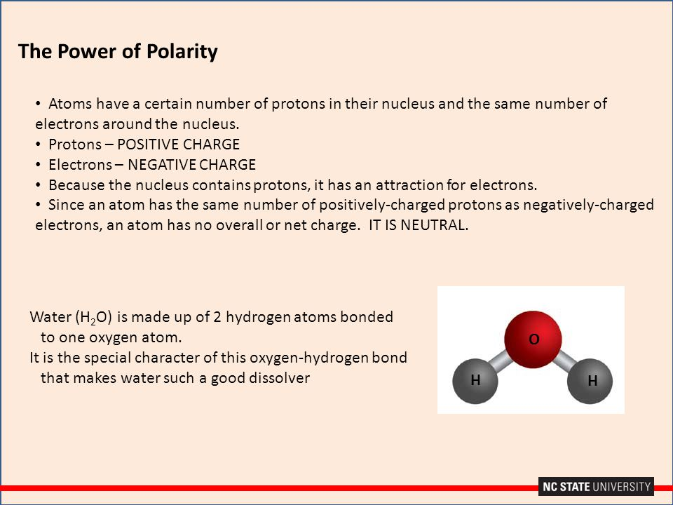 The Power of Polarity Atoms have a certain number of protons in their nucleus and the same number of electrons around the nucleus.