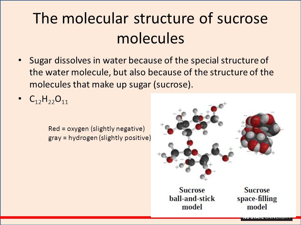 The molecular structure of sucrose molecules