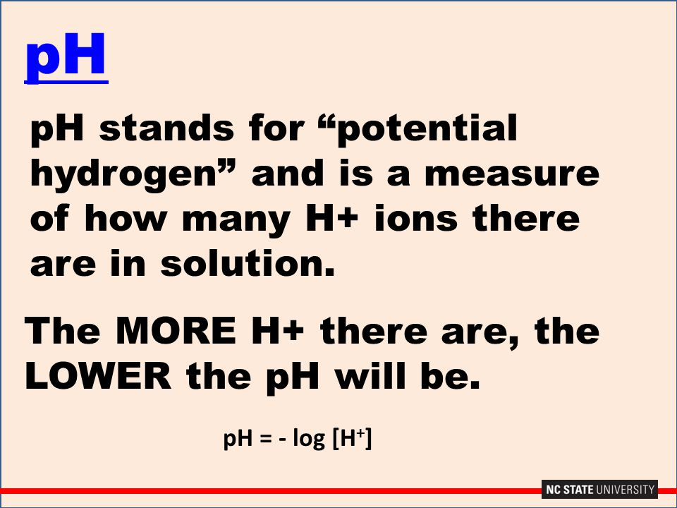 pH pH stands for potential hydrogen and is a measure of how many H+ ions there are in solution. The MORE H+ there are, the LOWER the pH will be.