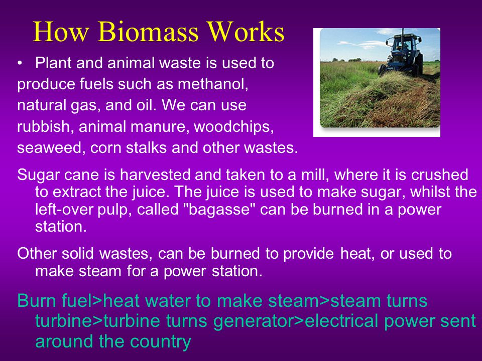 How Biomass Works Plant and animal waste is used to. produce fuels such as methanol, natural gas, and oil. We can use.
