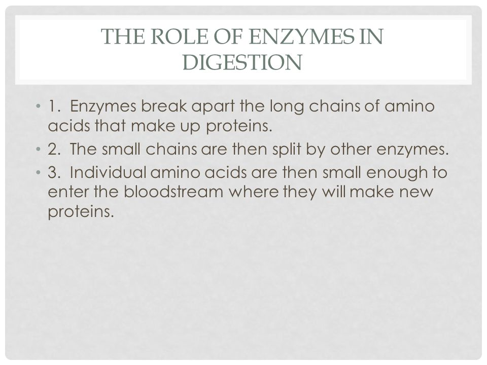 The Role of enzymes in Digestion