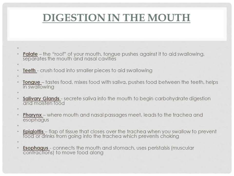 Digestion in the Mouth Palate – the roof of your mouth, tongue pushes against it to aid swallowing, separates the mouth and nasal cavities.