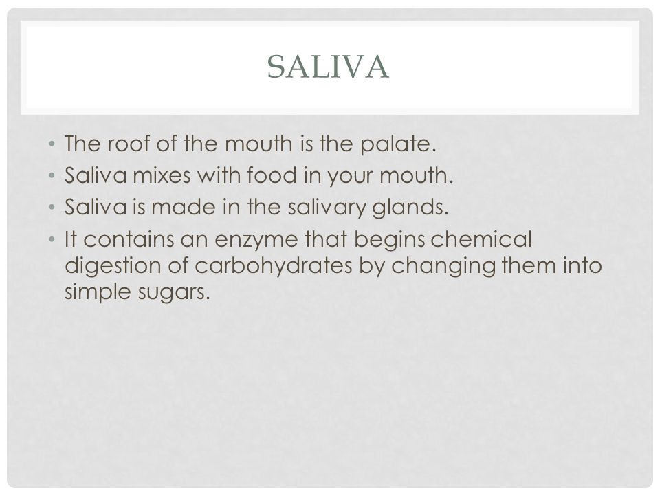 Saliva The roof of the mouth is the palate.