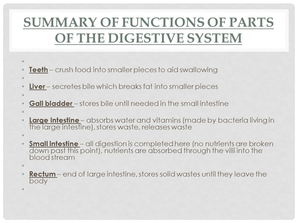 Summary of Functions of parts of the Digestive System