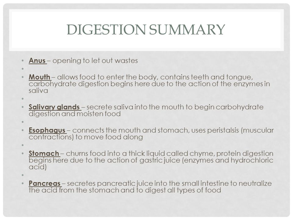 Digestion Summary Anus – opening to let out wastes